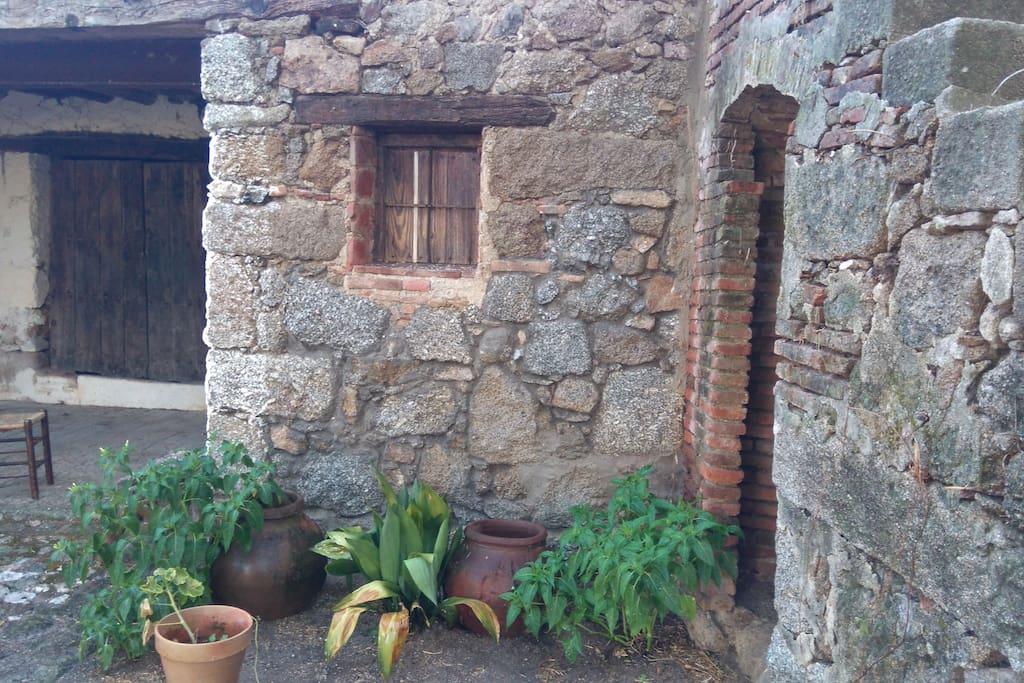Detalle patio jardín