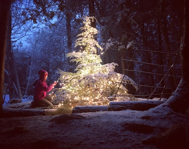 Candace decorating the tree at the center of our village of tiny homes