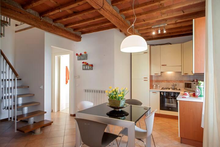 Graziosa casa con giardino fiorito - Lucca - Apartamento