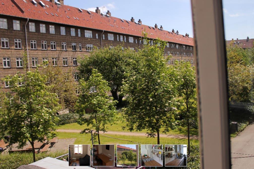 Location Copenhague Appartement