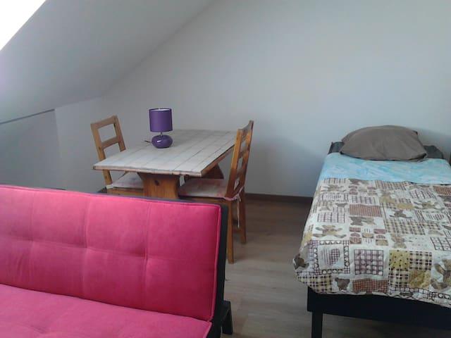 Grande chambre meublée neuve très confortable - Trouy - อพาร์ทเมนท์