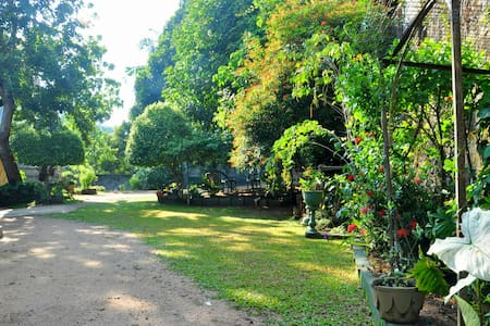 Suyaama - Your Home in Kandy - Bed & Breakfast