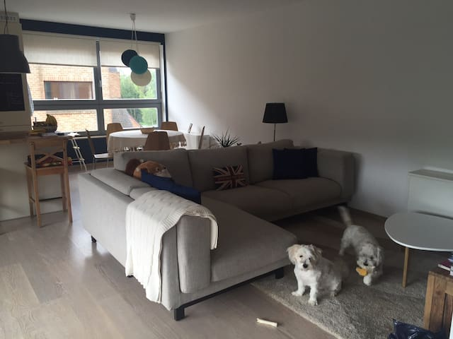 Spacious loft in a well connected area of Brussels - Woluwe-Saint-Lambert - Huoneisto