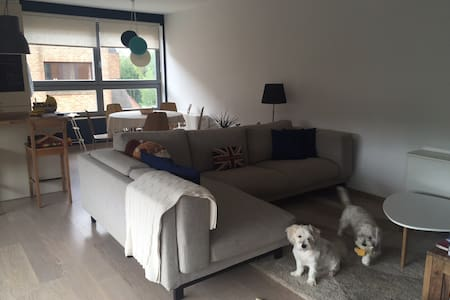Spacious loft in a well connected area of Brussels - Woluwe-Saint-Lambert - 公寓