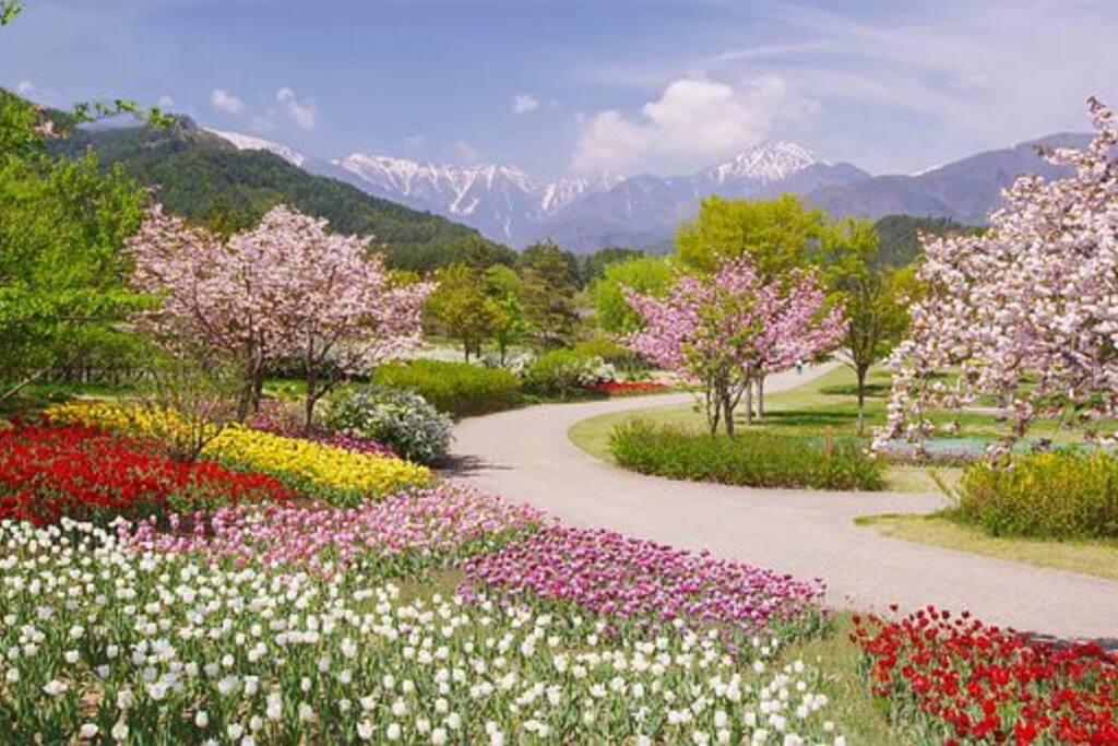 Jaro na horách