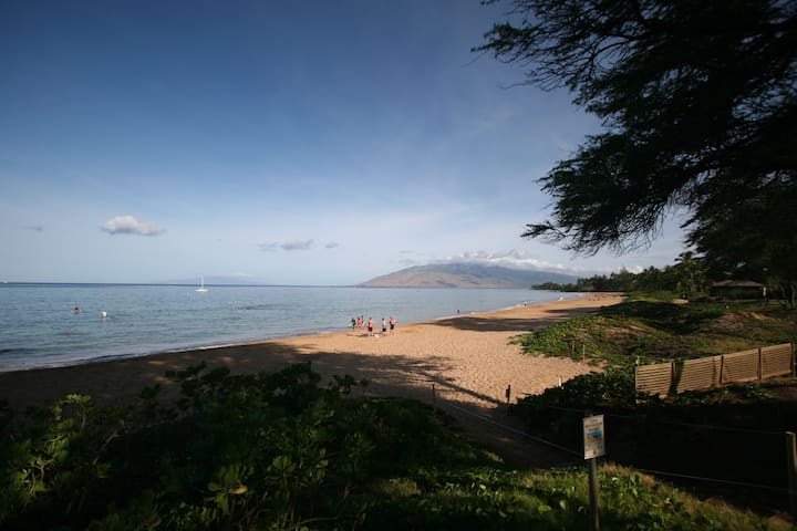 Beautiful Vacation Condo on Maui. Hop to a beach.