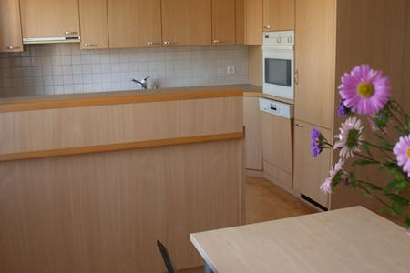 Friendly and quiet apartment for rent in Berg. - Berg - 公寓