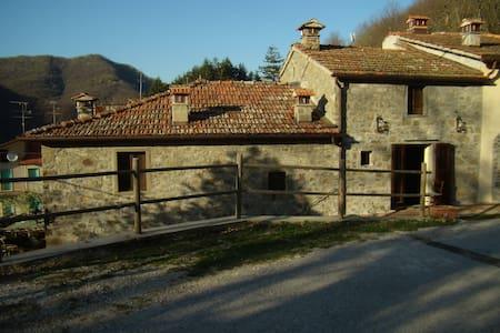 Accantoalbosco Casa Bani - Frassignoni - Hus