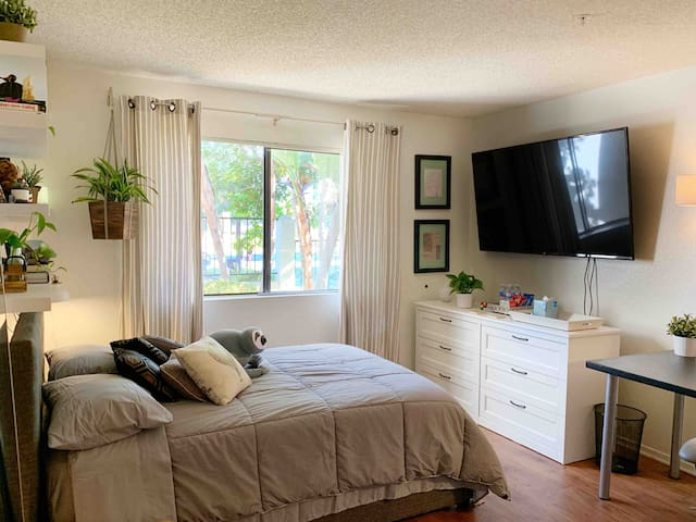 Private Room in Cozy Apartment in Newport Mesa