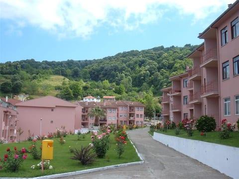 Paradise Hidden in Karacabey Longoz Forests