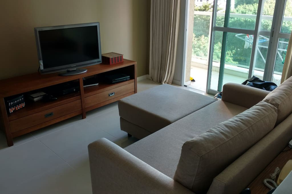 Living room: sofa and TV