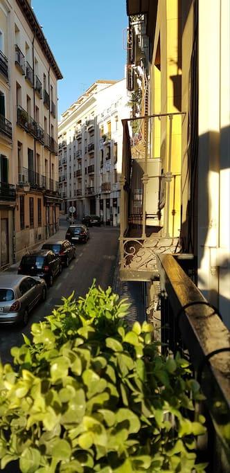 Balcony view - Live a typical Madrid neighbourhood