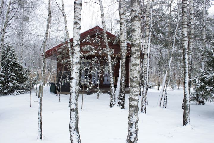 Cozy remote cabin on a lake shore