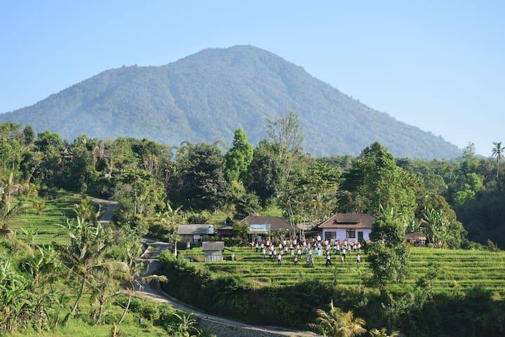 Great Home Stay in Jatiluwih, Bali - Penebel - Bed & Breakfast