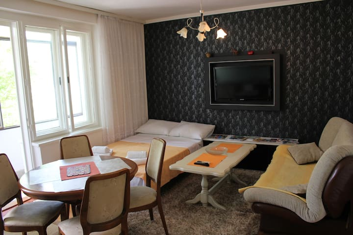 Gaviota is an apartment for you - Mostar - Apartament