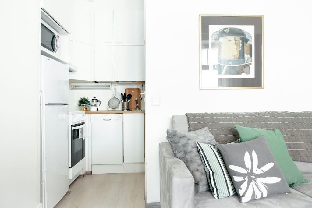 Small, but fully-equipped kitchen (stove, oven, microwave, dish washer, all cutleries, dishes and cooking pots, fridge, kettle, French press, toaster)