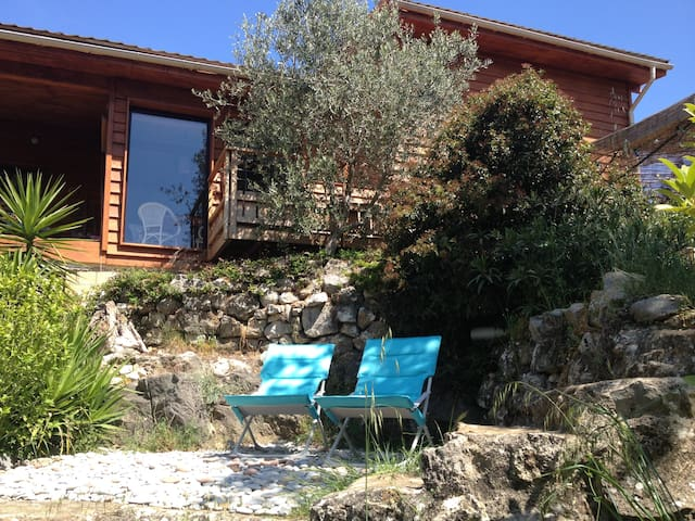 Peaceful country villa near Cannes - Valbonne - House