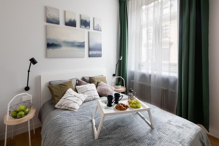 Modern Design Studio Apartment In Riga Center