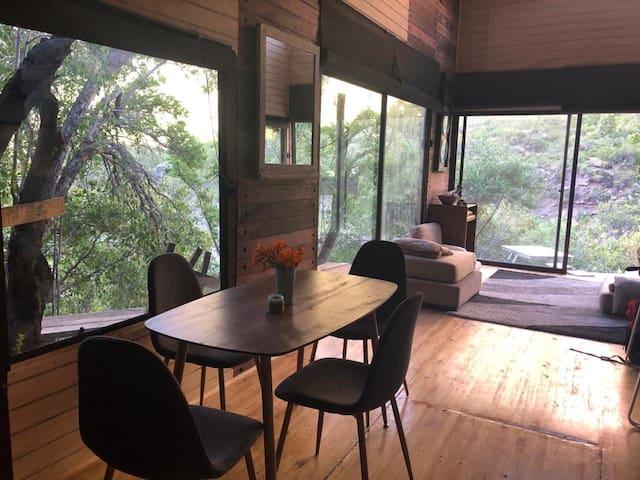 Apacible cabaña entre árboles y río.