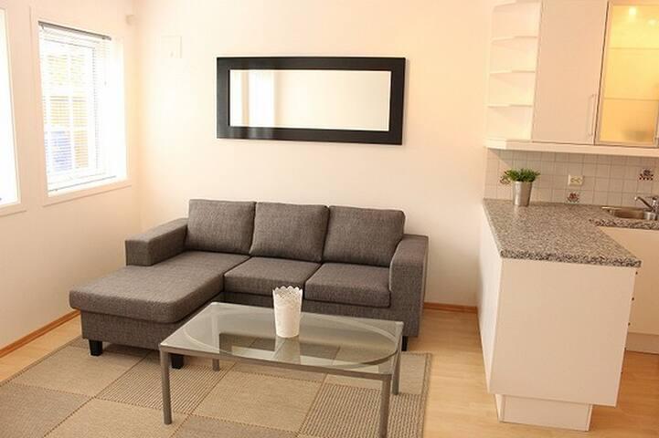 Lys og moderne leilighet til leie i juli