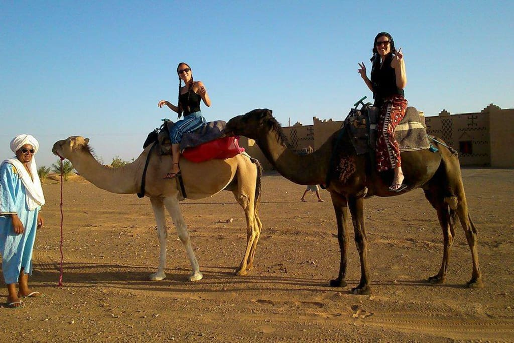 Camel Treck