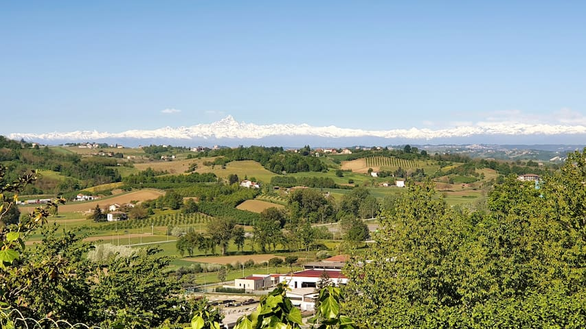 View from the estate. Monviso and the alps.
