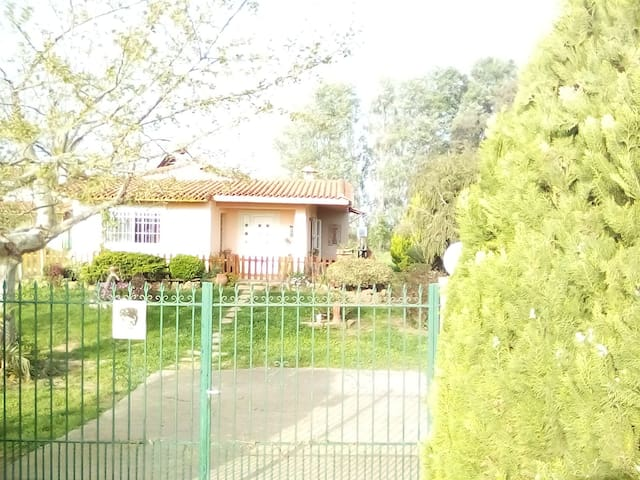Sunny house with big garden - Kourouta - Casa