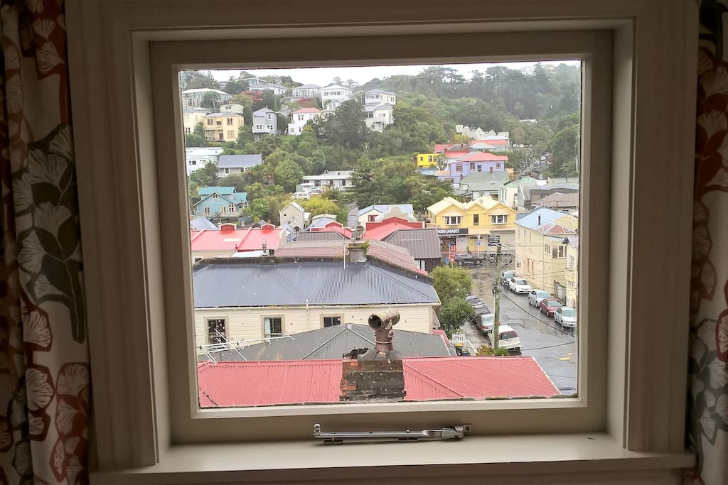 View of Aro Valley