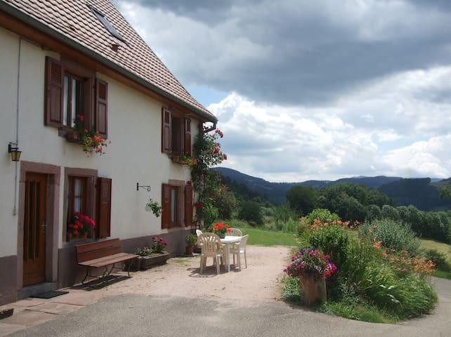 Gîte rural 2 * avec vue panoramique - Lapoutroie - Appartement