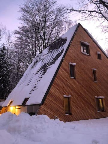 Brezovica luxury villa