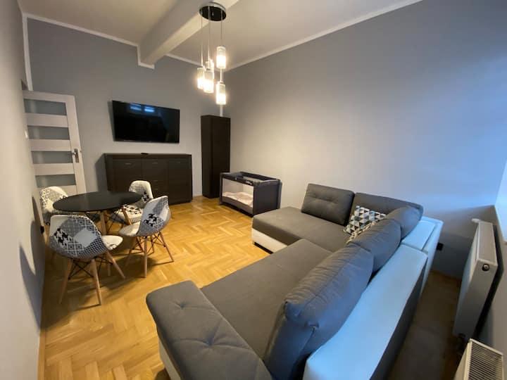 Apartament Deluxe w Bielawie [F21]Widok Góry Sowie