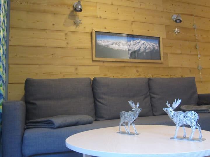 Vallée Chamonix  : appart-Ski-rando-trail