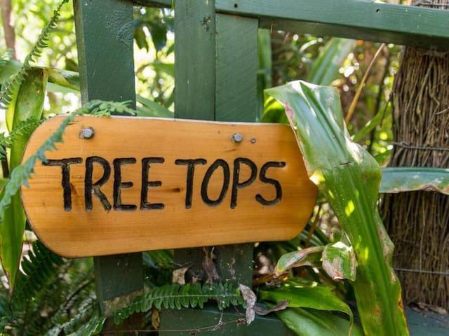Treetops Bungalow - Palm Beach Bungalows