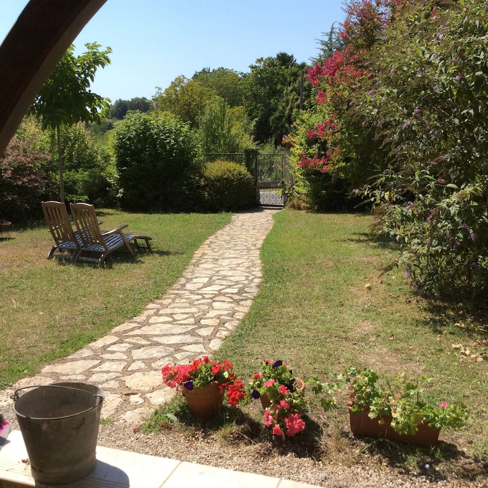 Garden in summertime.