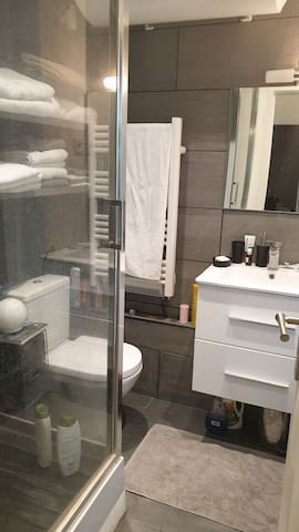 Bathroom with all utilities