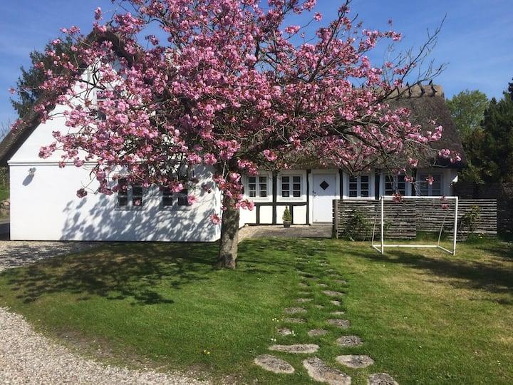 Idyllisk hus tæt på Odense