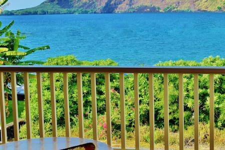 Oceanfront Home, Kealakekua Bay - Hale Hoʻolana