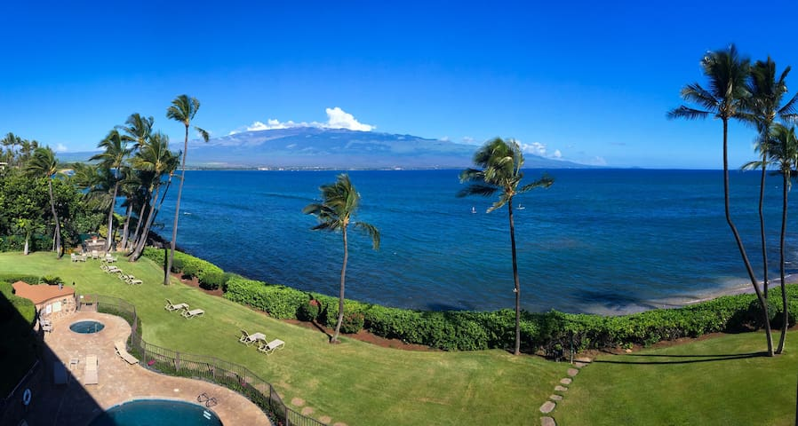 This is your actual treetop, panoramic  view of Ma'alaea Bay and Haleakala (10,043' dormant volcano), as seen from your private lanai.  Watch whales jump & play in the bay during the winter months and sea turtles feeding daily along the shoreline!