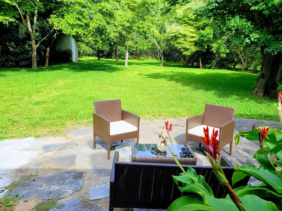 Tranquil backyard to lounge in. Best enjoyed with good company and a cold beverage!