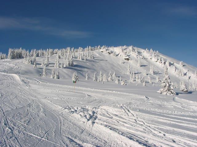 Hotelservice in gemütlicher Fewo, Skifahren - Schladming - Outros