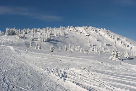Hotelservice in gemütlicher Fewo, Skifahren - Schladming - Muu