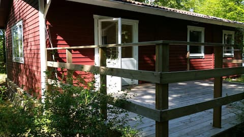 Sommerhus i smuk bøgeskov
