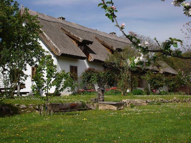 Geräumiges Bauernhaus am Balaton - Nemesvita - Guesthouse