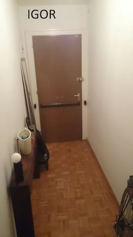 Student sharing apartment - Cenevre - Daire