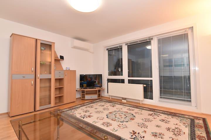 Spacious Apartment by UN and Austria Center