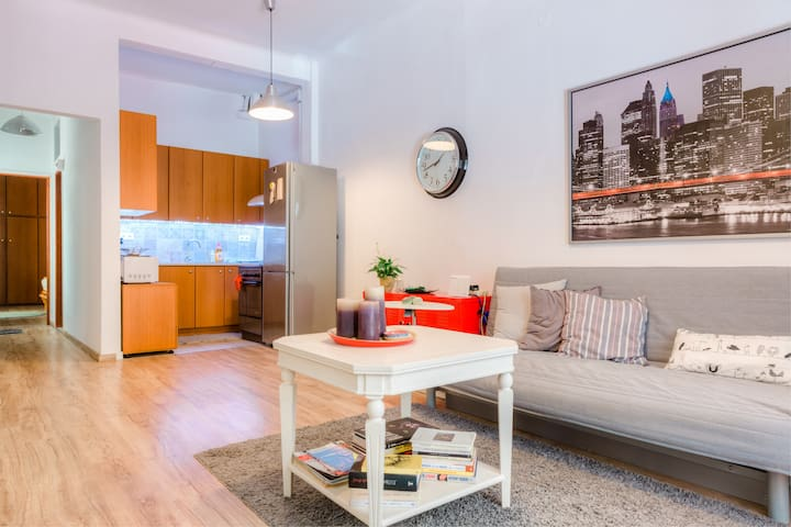 Renovated, open and functional old city house