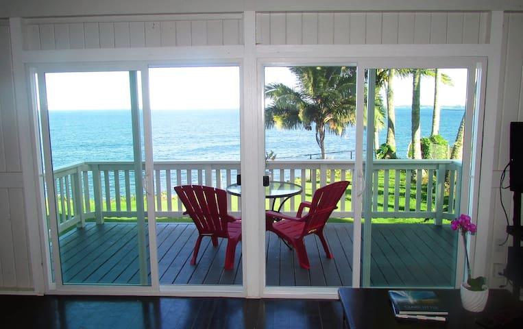 Hilo Hale Kai at Honolii Oceanfront - Hilo - Huis