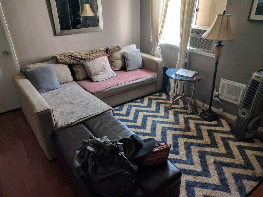 Living room. Couch converts into queen-sized bed. Ottoman converts to a twin bed with memory foam.