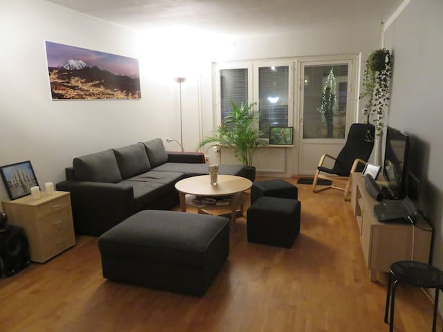 Confortable 3 room-appartment (79m2)