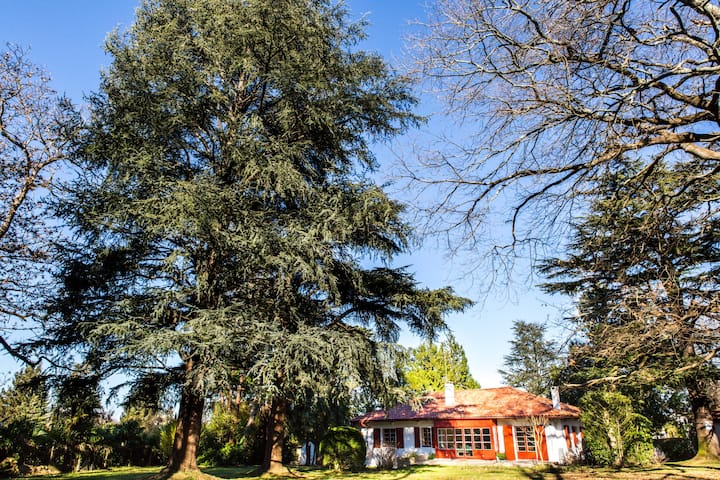 Villa avec piscine et terrain de 1 hectare